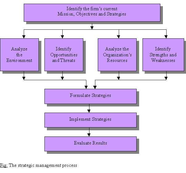 topic the strategic management process is explained in the diagram below